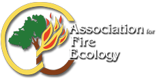 8th AFE Intl. Fire Congress