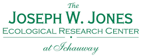 jones research center logo